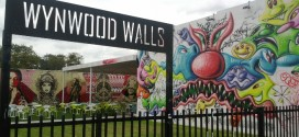 wynwood area of miami