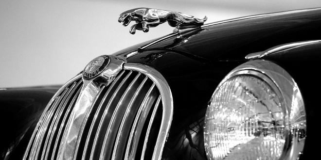 all things automotive jaguar photo
