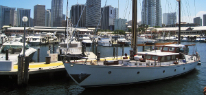 branding miami icon sailboat at dock