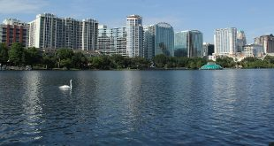 Bergstrom Center for Real Estate Studies icon lake eola