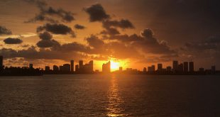 Miami Residential Market icon miami at sunset