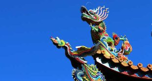 chinese business icon dragon image