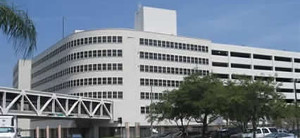 miami transplant institute small